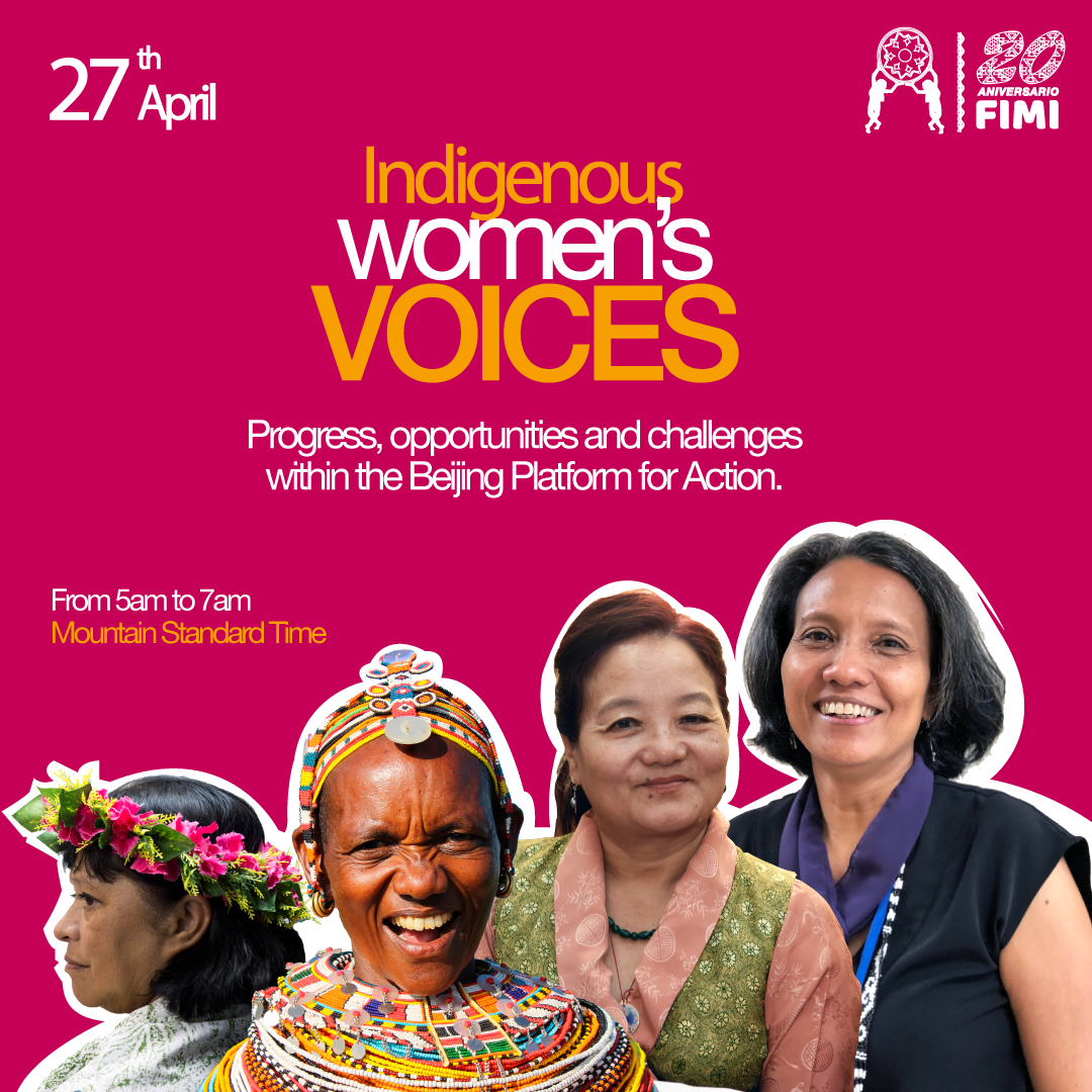 When advocacy finds new spaces, webinar:Voices of Indigenous Women